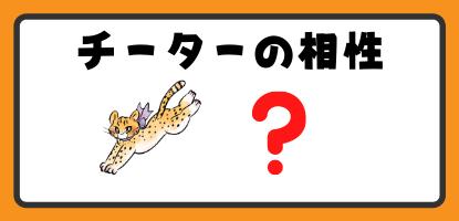 チーターと他の動物の相性
