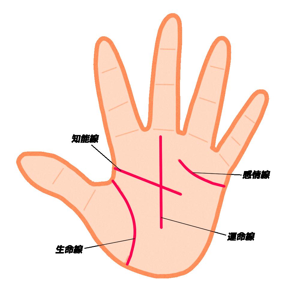 手相の基本線と補助線の図