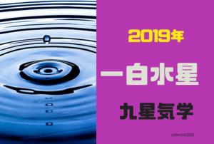 【2019年】一白水星の年運・月運を解説します