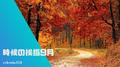9月の季語一覧と時候の挨拶の文例まとめ!【手紙/書き出し】