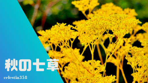 秋の七草の意味・由来と覚え方とは?【順番/花言葉/お粥で食べる?】