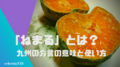 「ねまる」とは?九州の方言の意味や使い方を知ろう