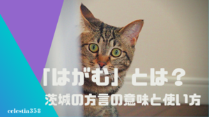 「はがむ」とは?茨城の方言の意味や使い方を知ろう