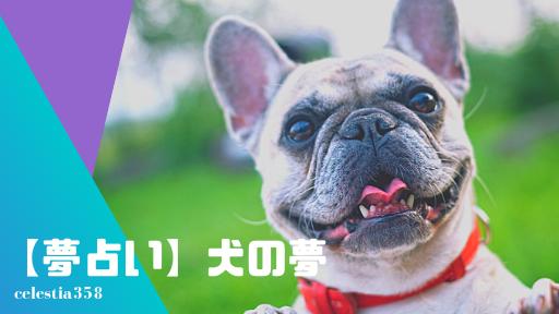 【夢占い】犬の夢の意味と心理を診断!噛まれる・飼う・追いかけられる・なでる等