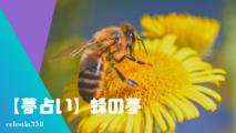 【夢占い】蜂の夢の意味と心理を診断!蜂に刺される・蜂の巣・蜂に追われるなど