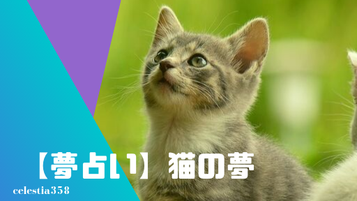 【夢占い】猫の夢の意味と心理を診断!死ぬ・たくさん・なつく・噛まれる・野良猫・飼う・白い猫など