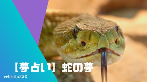 【夢占い】蛇の夢の意味と心理を診断!大蛇・殺す・捕まえる・たくさんでてくる・毒蛇・逃げるなど