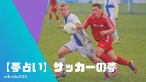 【夢占い】サッカーの夢の意味と心理を診断!試合・する・選手になる・応援する・ゴールを決めるなど