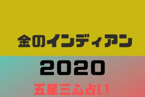 【2020年】金のインディアンの年運・月運を五星三心占いで徹底解説