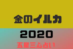 【2020年】金のイルカの年運・月運を五星三心占いで徹底解説
