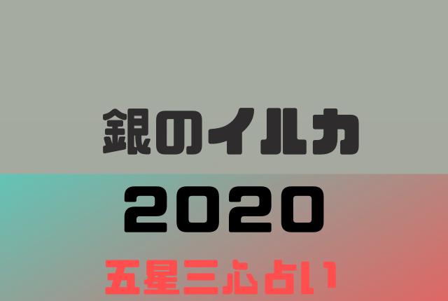 【2020年】銀のイルカの年運・月運を五星三心占いで徹底解説