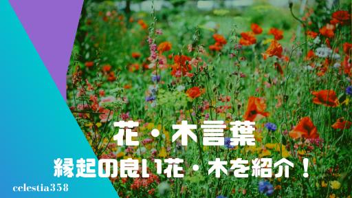 【花言葉・木言葉】縁起のいい花や木をご紹介!お祝いや結婚式におすすめ