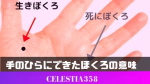 手のひらにできたほくろの意味とは?金運などの運勢がわかるほくろ占いを紹介