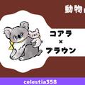 【動物占い】コアラ(ブラウン)の性格や相性について解説します!