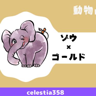 【動物占い】ゾウ(ゴールド)の性格や相性について解説します!